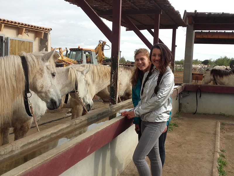 Exchange students in Camargue France